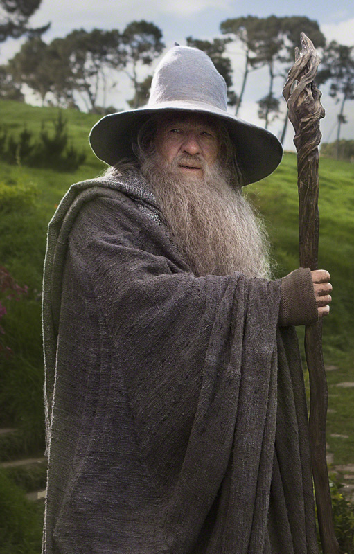 Harry Potter Lord Of The Rings